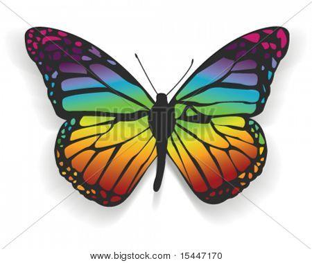 Regenbogen-Schmetterling
