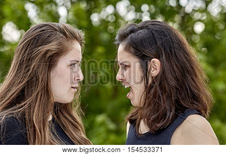 Two Girls Having A Heated Arguement