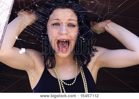 model behind spider net