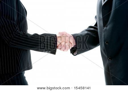 business handshake between woman and man