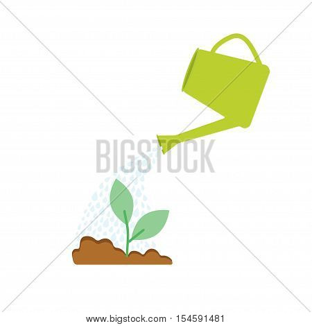 Watering seedlings in the ground. Watering plants can.