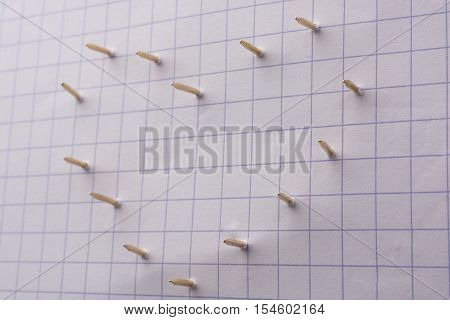 Nails make holes on paper forming a heart shape