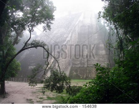 Temple V In The Ancient Mayan City Of Tikal