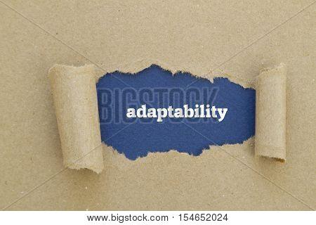 Adaptability word written under torn paper .