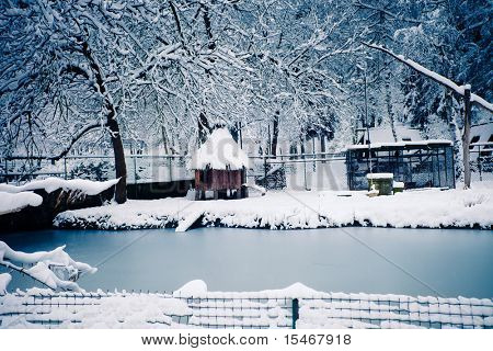 congelados lagoa e pequena estalagem e gaiolas para pássaros e rebits cobertas de neve, Kosutnjak, Belgrad
