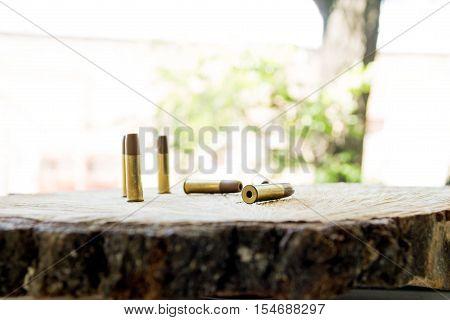 Bullets. Ammunition.