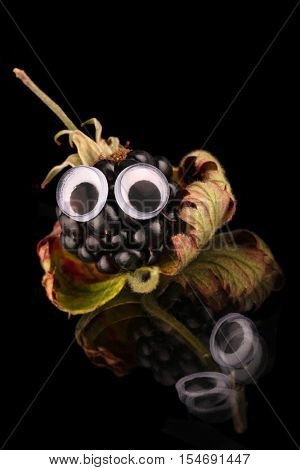 Summer blackberry grown and picked fresh from my garden. Funny fruit with eyes applied in a cute tilt ,looks an adorable little character.