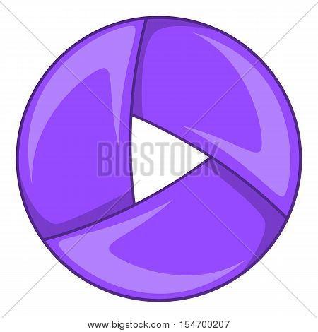 Color camera shutter icon. Cartoon illustration of shutter vector icon for web design