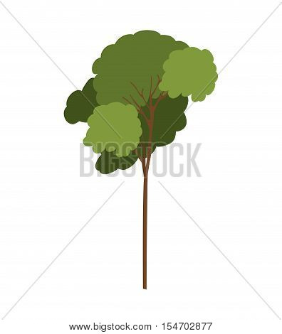 silhouette tree with leafy branches model four vector illustration