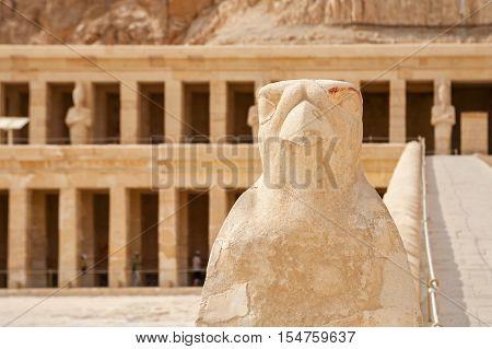 Stone Horus statue at Mortuary Temple of Queen Hatshepsut. Deir el Bahri Luxor Egypt
