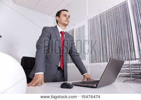 Mature businessman working at the office with his laptop
