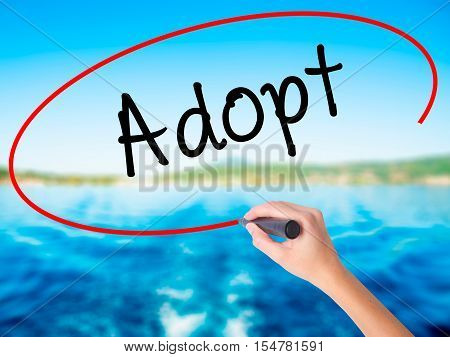 Woman Hand Writing Adopt  With A Marker Over Transparent Board