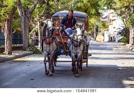 Istanbul Turkey - October 30 2016: Phaeton Buyukada. Horse carriage. The symbol of the Islands is the transportation vehicle phaetons. Adalar in Marmara Sea near Istanbul in Buyukada (meaning Big Island in Turkish). This is a neighborhood in the Istanbul
