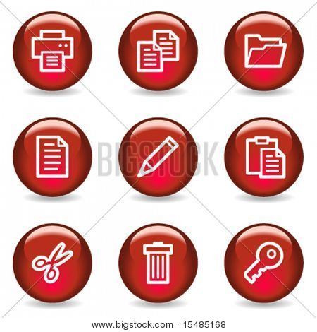 Document web icons, red glossy series
