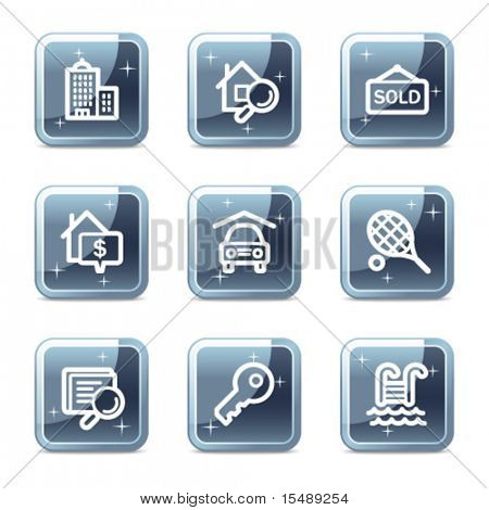Real estate web icons, mineral square glossy buttons