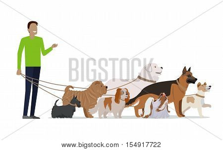 poster of Professional dog walking banner. Young man walking with group of different breeds dogs on white background. Dog service. Vector illustration in flat style. Cartoon dog character, pet animal