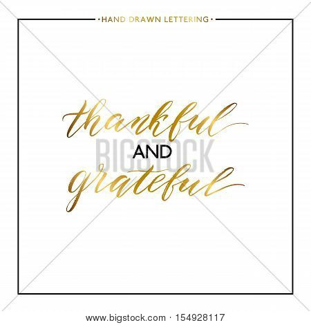 Thankful and grateful gold lettering isolated on white background, hand painted letter, golden vector thanksgiving text for greeting card, poster, banner, print, handwritten calligraphy