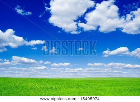 Campo verde e nuvens macias.