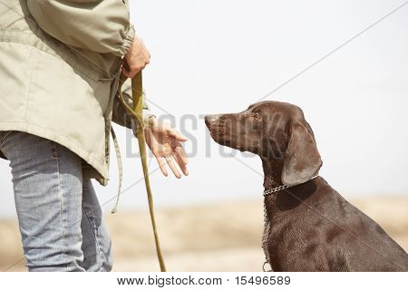 Dog And Trainer