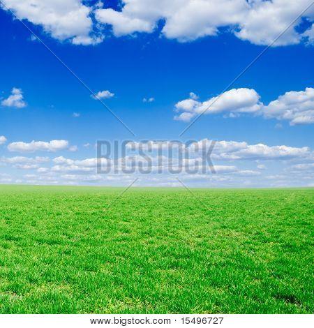 nuvens e campo de Primavera