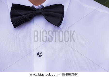 Black silk bow tie and white cotton dress shirt