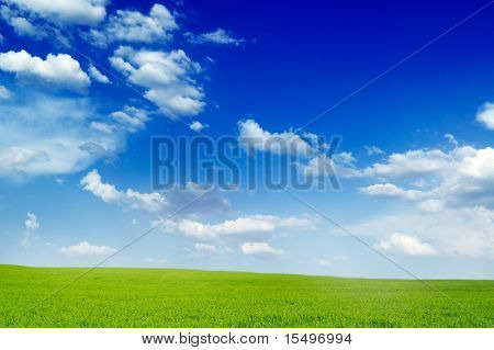 spring field and clouds