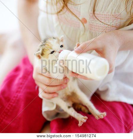 Little girl feeding small kitten with kitten milk from the bottle
