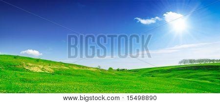 campo y cielo azul