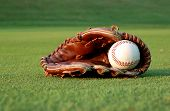 Baseball Glove On The Field