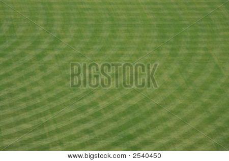 Petco Park Stadium Outfield
