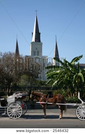 Carriages Jackson Square New Orleans