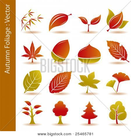 Autumn foliage leaf icons set. Illustration vector.