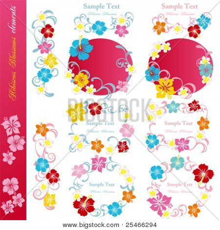 Hibiscus design elements set. Illustration vector.