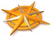 pic of compass rose  - Navigation - JPG