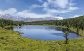 Round Lake In Gorny Altai, Russia. Landscape With A Soaring Bird poster