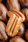 stock photo of pecan tree  - Pecan halves on a group of whole pecans - JPG