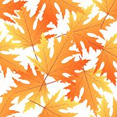 Maple Autumn Leaf Seamless Pattern. Fall Background poster