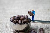 Coffee Beans Business Expert Or Professional Concept, Miniature People Figurine Staff Holding Roaste poster