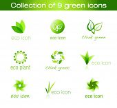 Collection of nine green eco-icons