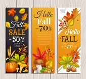 Seasonal Fall Sale Banners With Autumn Foliage Maple, Oak, Elm, Pumpkin, Chestnut, Leaves Rhus Typhi poster