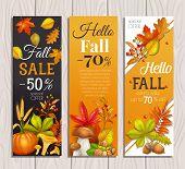 Seasonal Fall Sale Banners With Autumn Foliage Maple, Oak, Elm, Pumpkin, Chestnut, Leaves Rhus Typhi poster