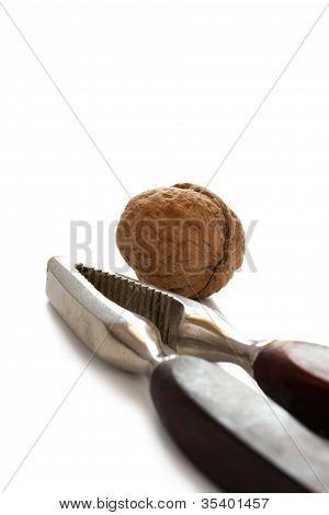 Nutcracker with walnut