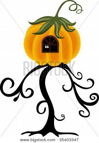 House pumpkin on the tree