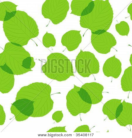 Seamless pattern of green leaves on the white background