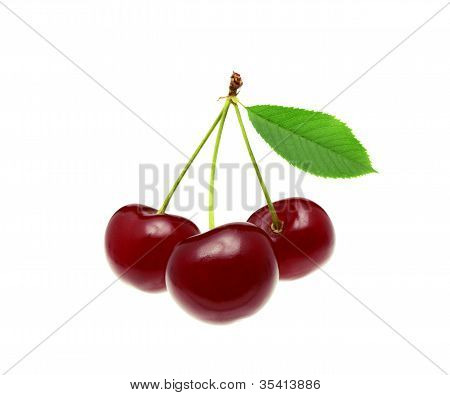 Cherries whith leaf