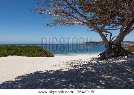 Carmel Beach In Carmel, California
