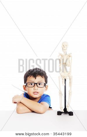 Nerd Student With Human Skeleton
