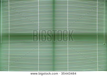 Green Window Blinds