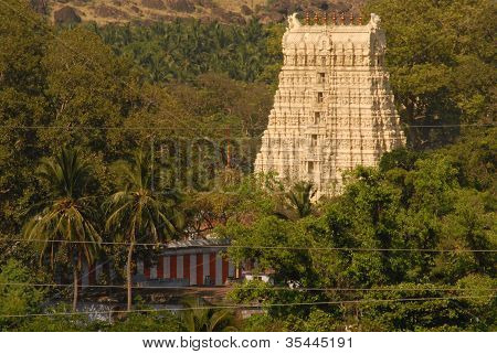 temple at papanasam in tamilnadu india