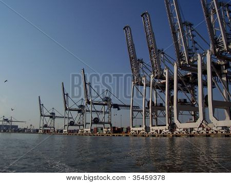 Shipping Cranes at Savannah Ports Authority